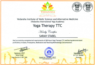 Yoga Therapy Rishikesh